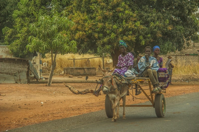 Locals riding a donkey cart in The Gambia