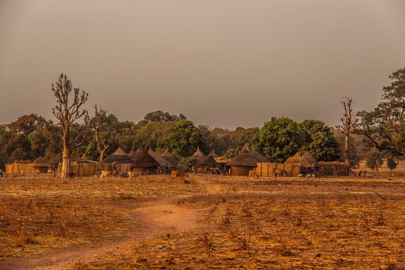 Gambian village looks beautiful in the sunset