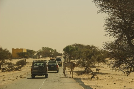 Highway in Mauritania