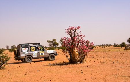 Land Rover Discovery I overlanding in Senegal